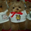 Teddy bear with personalized t-shirt