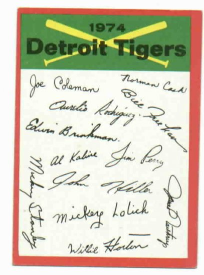 1974 Topps Detroit Tigers Team Card Checklist Unmarked