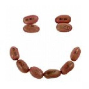Assorted messages Magic Beans, 10 pck.