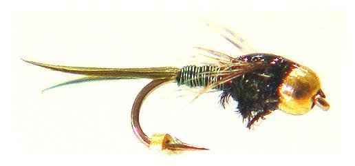 Olive Copper John Nymph Fishing Flies - Twelve Size 14