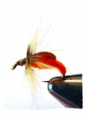 Orange CADDIS Fly Fishing Flies - Twelve Hook Size 10