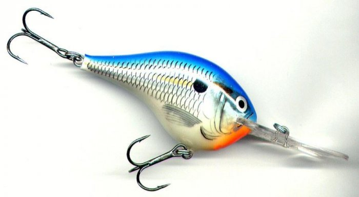 "Rapala 2"" Rattling Balsa Blue Shad Dives to 6 Feet"
