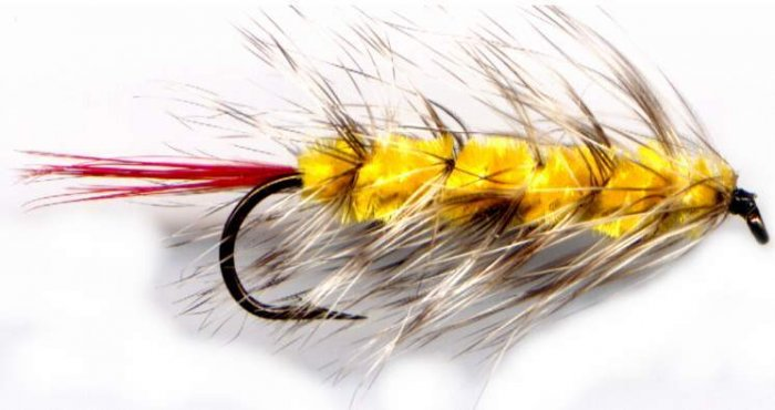 Yellow Wooly Worm Fly Fishing Fly - One Hook Size 8 Fly