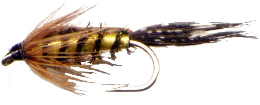 Tellico Nymphs - Twelve Fly Fishing Flies Hook Size 10
