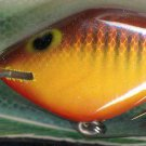 Vintage (1987) POE'S SUPER CEDAR Brown Crawdad 429 Lure