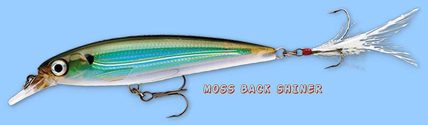 Rapala Moss Back Shiner X-RAP Suspending Lure (XRSS10 MBS) with VMC SureSet Hook