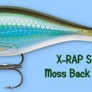 Rapala X-RAP Shad Moss Back Shiner (XRSSS08 MBS) Fishing Lure with SureSet Hook