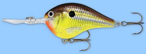 Rapala DT4 HM Hot Mustard Rattling Natural Balsa Crankbait Lure Dives to 4 Feet