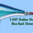Rapala X-RAP Blue Back Shiner (XRSHSS08 BBS) Shallow Shad Lure w/ SureSet Hook