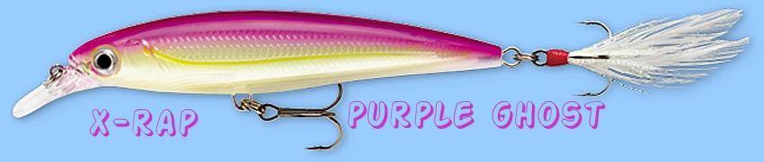 Rapala X-RAP Purple Ghost (XR12 PGH) Suspending/Rattling Slashbait Lure