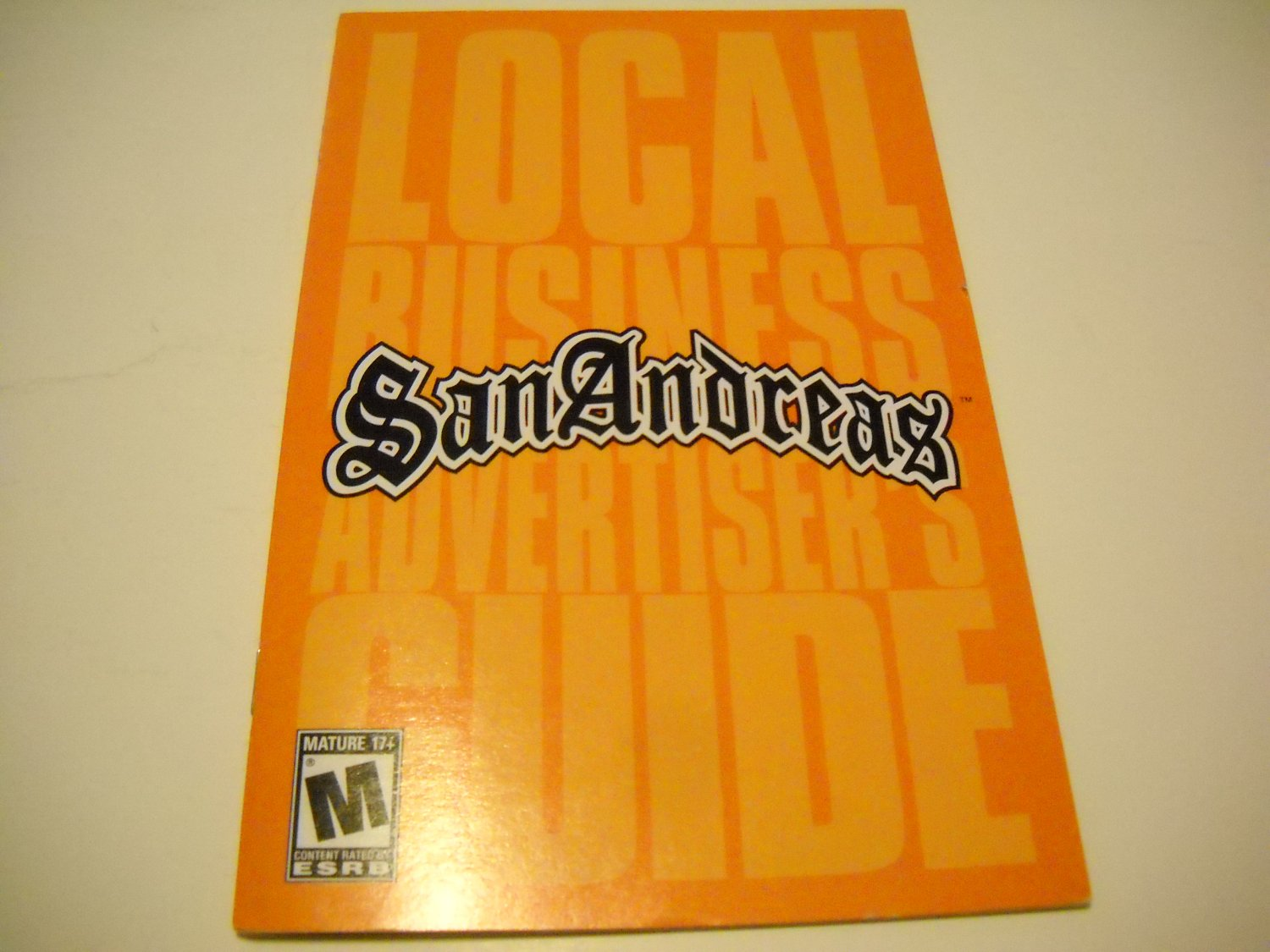 Manual ONLY ~  for GTA / Grand Theft Auto San Andreas   Ps2