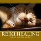 Zone Reiki - Reiki For Your Reflex Zones