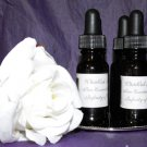 Infinity of Wellness Anointing Oil