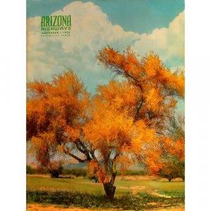 Arizona Highways Magazine - BLUE PALO VERDE TREE - ZUNI INDIAN DANCE - Nov 1954 - Vol. XXX, No. 11