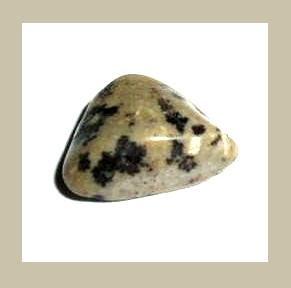 8.41cts DALMATIAN JASPER Tumbled and Polished Natural Loose Gemstone