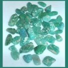 25.21ctw Lot of Green Mini LEOPARD SKIN JASPER Tumbled and Polished Natural Stones