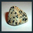 33.48ct DALMATIAN JASPER Tumbled and Polished Natural Loose Stone