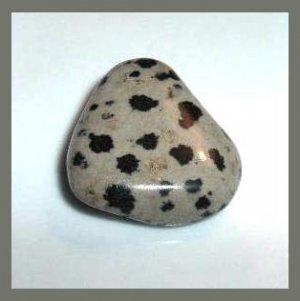 32.36ct DALMATIAN JASPER Tumbled and Polished Natural Loose Stone