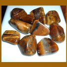 Lot of 11 GOLDEN BROWN TIGER'S EYE Tumbled and Polished Natural Loose Gemstones
