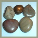 175.45ctw Mixed Lot of Gray Brown AGATE Tumbled and Polished Natural Loose Stones