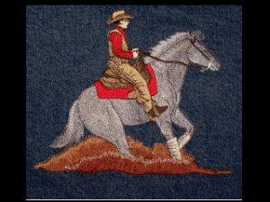 new WESTERN REINER HORSE Medium jean jacket