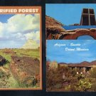 Vintage Arizona Photo Postcard Lot; Desert Museum+