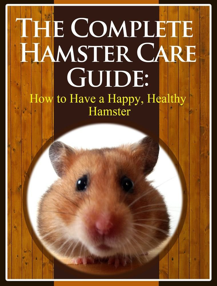 Guide to Care for Your Hamster eBook on CD Printable - Free Combined Shipping