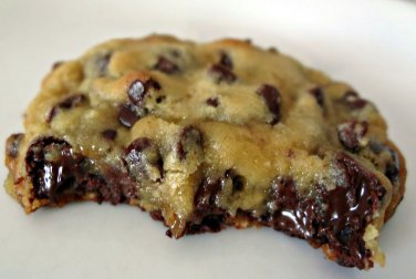 78 Chocolate Chip Cookie Recipes eBook on CD Printable