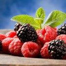 77 Raspberry Recipes eBook on CD Printable