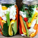 How To PICKLE VEGETABLES & Recipes eBook