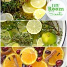 DIY Air Fresheners Home Fragrances & Incense Recipes eBook