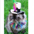 Pampered Whiskers pet party hat