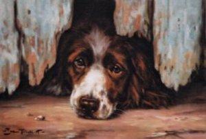 'The Underdog'