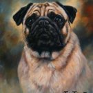 'Portrait of a Pug'