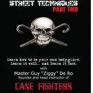 VD2614A  Street Street Self Defense Fighting Techniques Combat Cane #2 DVD Guy De Ro