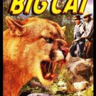 VD9059A  The Big Cat DVD - 1949 B/W Forrest Tucker Preston Foster Suspense Thriller