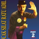 VD3063A  Indonesian Pencak Silat Ratu Adil #2 Pukulan forms 1 & 2 DVD Rudy Terlinden