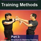 VD5245A Wing Chun Gung Fu Training Methods #3 DVD Randy Williams WCW16-D