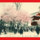 1910 JAPAN Japanese Hand Tinted Colored Postcard  Asakusa Park Tokyo Cherry Blossoms People #EC66