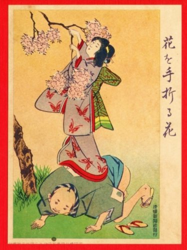 JAPAN Japanese Art Postcard KOKKEI SHINBUN Picking Cherry Blossoms #EAK28