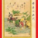 JAPAN Japanese Art Postcard KOKKEI SHINBUN River Horse by HOKUSAI #EAK29