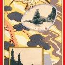 Antique JAPAN Japanese Embossed Art Postcard Hawk Lake #EA134