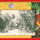 Vintage JAPAN Japanese Art Postcard Long-Tailed Cock Hen #EA140