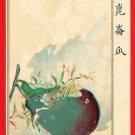 JAPAN Japanese Art Postcard KOKKEI SHINBUN Eggplant Cricket #EAK34