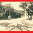 Vintage Postcard FORMOSA Taiwan Under Japanese Rule Taipei Botanical Garden #EF26