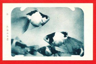 Vintage JAPAN Japanese Postcard Goldfish #EO26