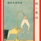 JAPAN Japanese Art Postcard KOKKEI SHINBUN Laboratory Experiment Frog Legs #EAK55
