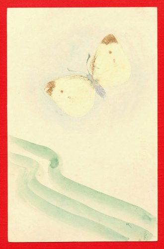 JAPAN Japanese Postcard Original Art Hand Painting Butterfly #EAW76