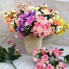 71007-flower roses