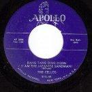APOLLO 510 CELLOS Rang Tang Ding Dong/You Took My Love